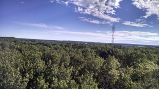 A look from the top of the PROPHET tower. The tower in the distance is the 50 m Ameriflux Tower